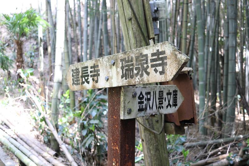 20170415_鎌倉アルプス_0346.jpg
