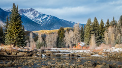 Cottage on the Creek - Vallecito Creek, CO