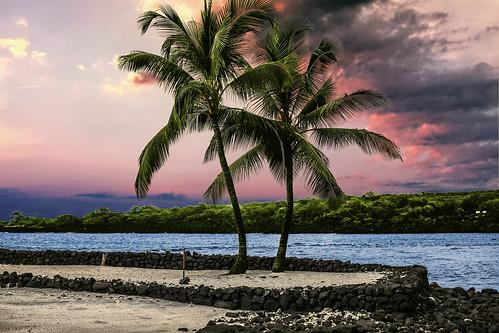 hōnaunaubay dusk sunset clouds sky palmtrees wyojones np