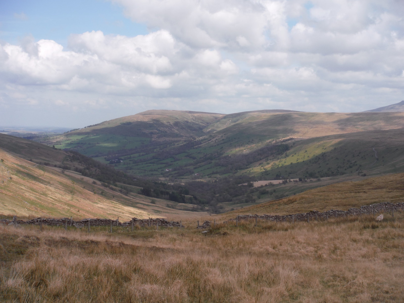 View from Bwlch y Duwynt SWC Walk 307 - Fforest Fawr Traverse (Craig y Nos to Llwyn-y-celyn)