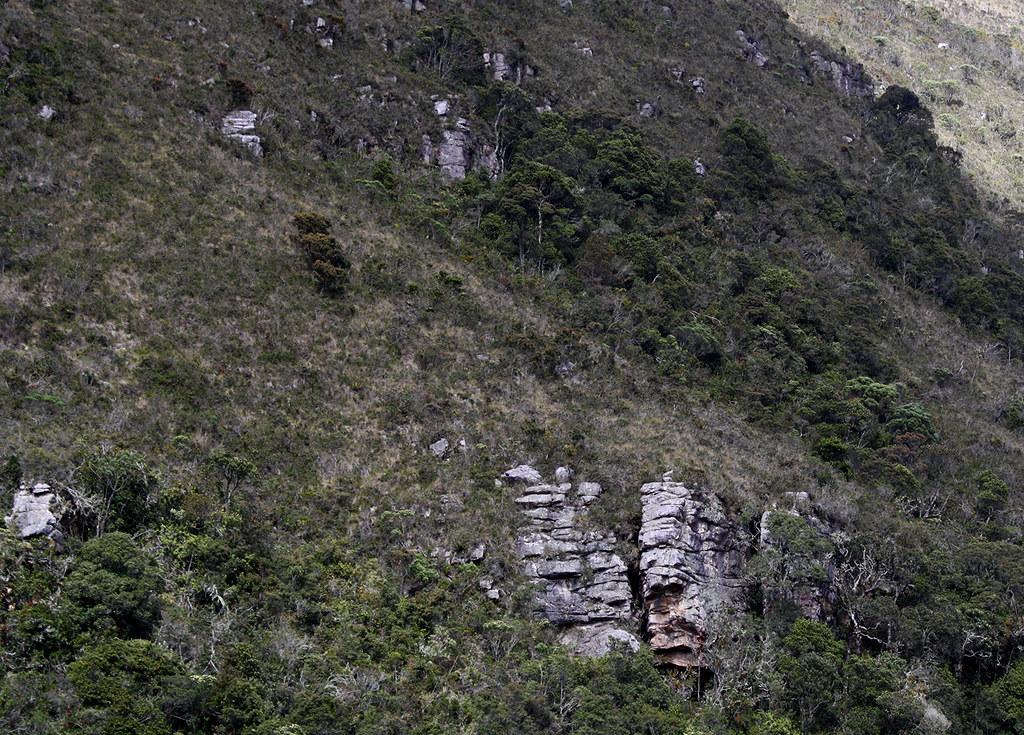 Iguaque-3