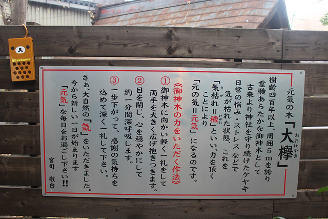 chinjyuhikawajinja-gosyuin033