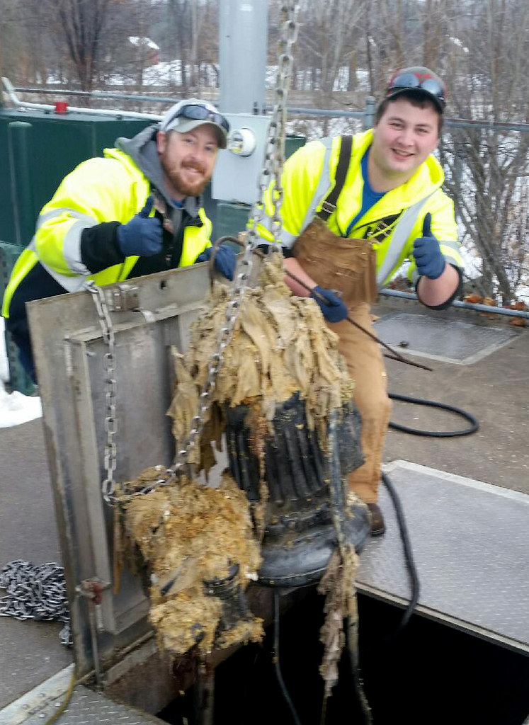 Protecting Your Sewage System Could Save You Money and a Headache