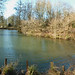 Leasowes Park - Beechwater Pool - panoramic