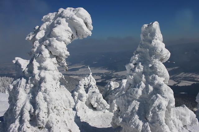 Winter view.