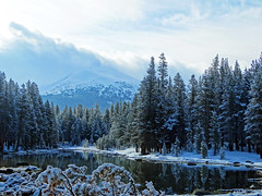 Fresh Snow on a Spring Morning, Yosemite High Country 5-17