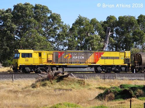 IMG_2136 ACN4149 Picton Yard 8.2.18_1