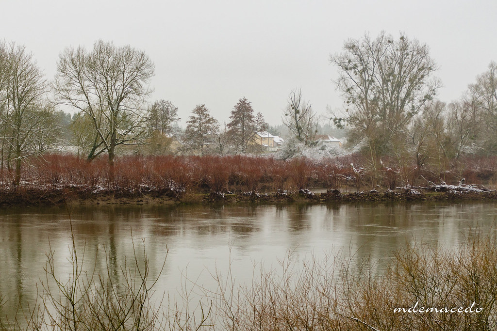 Ambiance et couleurs hivernales - IMG_5301 | Ambiance hivern… | Flickr