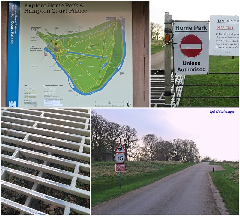 Travel-lonton-HamptonCourtPark-Kingston-17docintaipei- (6)