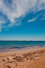 Queenscliff Beach #1