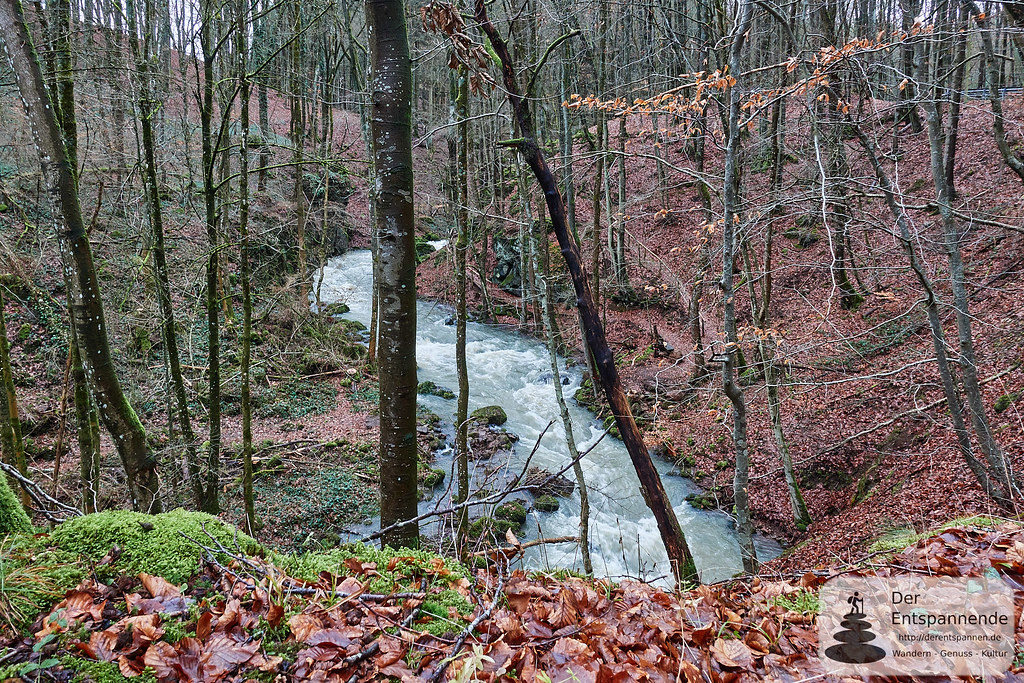 Alfbach vor Strohn in der Eifel