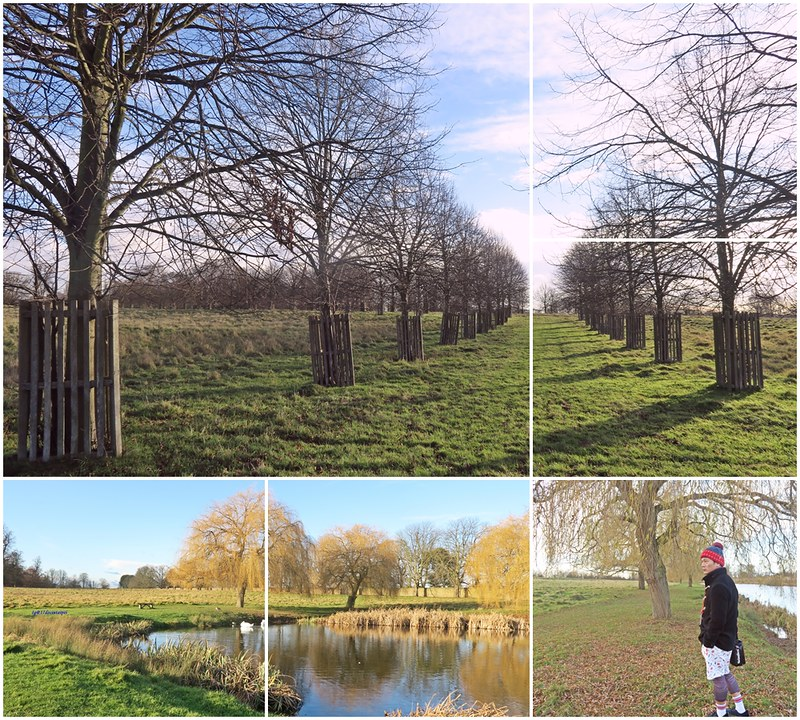 Travel-lonton-HamptonCourtPark-Kingston-17docintaipei- (17)
