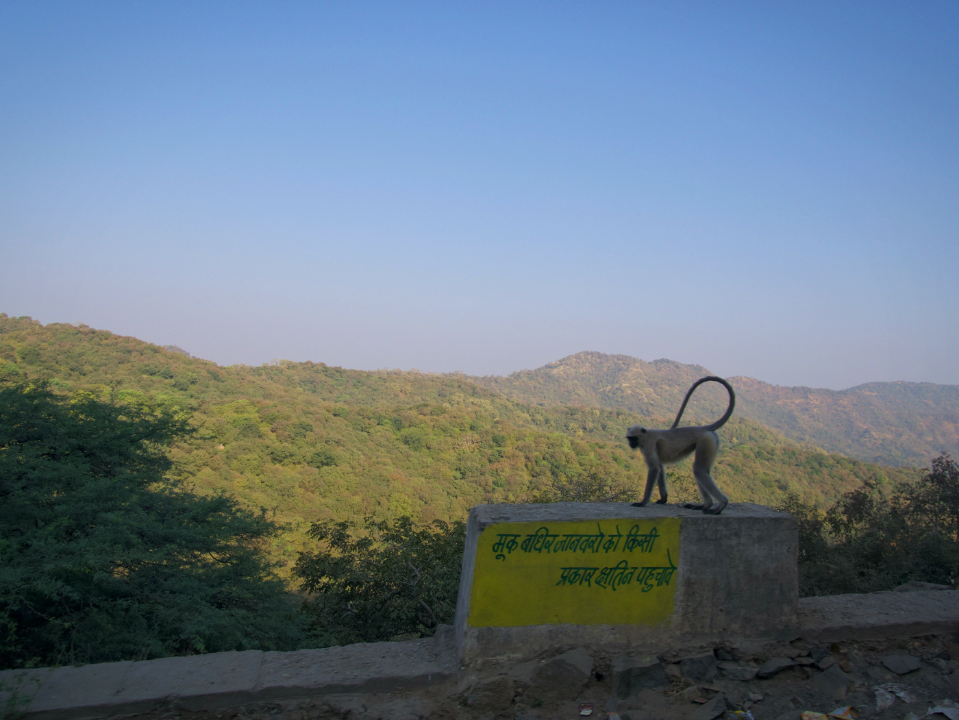 675-India-ontheroad