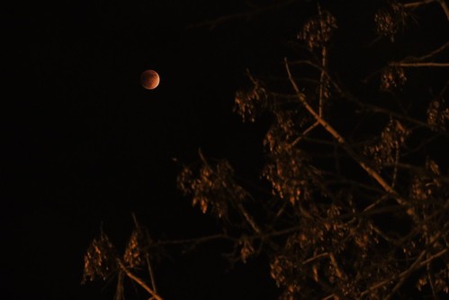 Lunar eclipse 31-01-2018 (P7700) (3)
