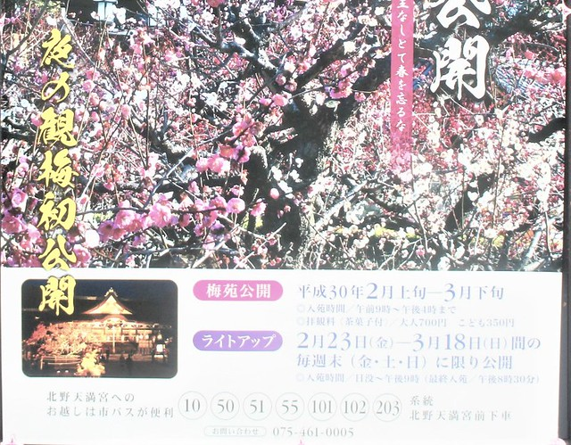 kitanotenmangu02026 - コピー