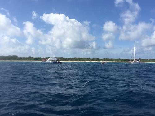 49 - Diving & snorkeling / Tauchen & Schnorcheln - Isla Catalina