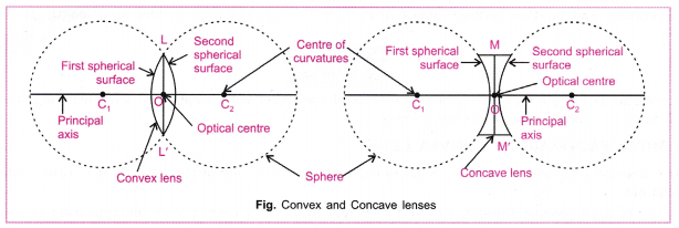 cbse-class-10-science-practical-skills-focal-length-of-concave-mirror-and-convex-lens-17