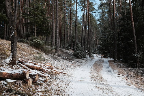 Ein Bis(s)chen Winter