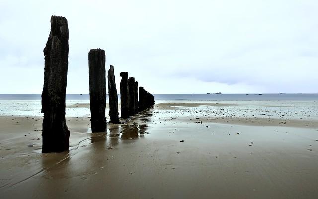 Beach, posts, and horizon; minimalist