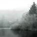 Trentabank Reservoir, Macclesfield Forest