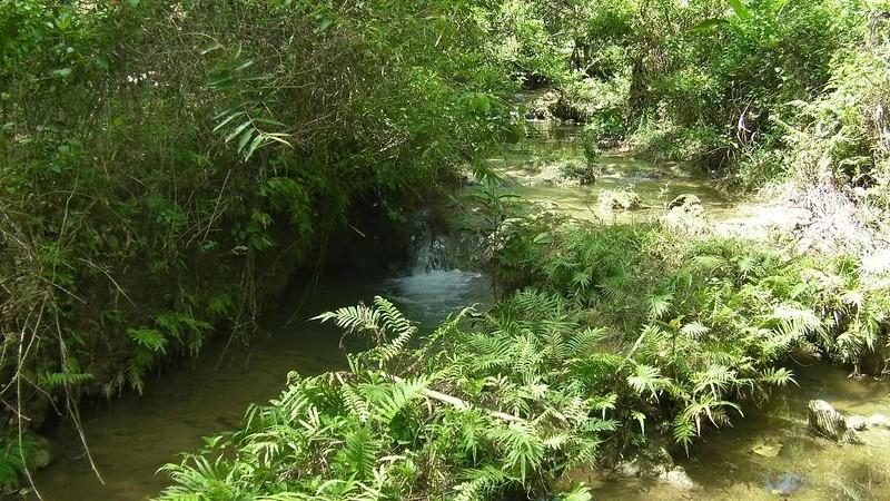 shallow stream