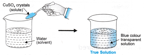ncert-class-9-science-lab-manual-solution-colloids-suspension-3