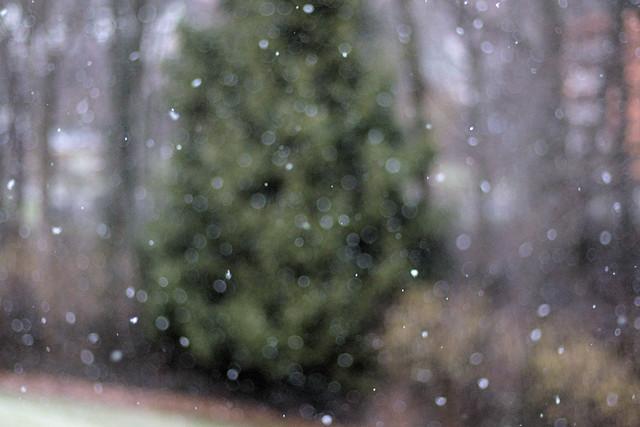 Snowblind, Canon EOS M6, Canon EF 50mm f/1.8 STM