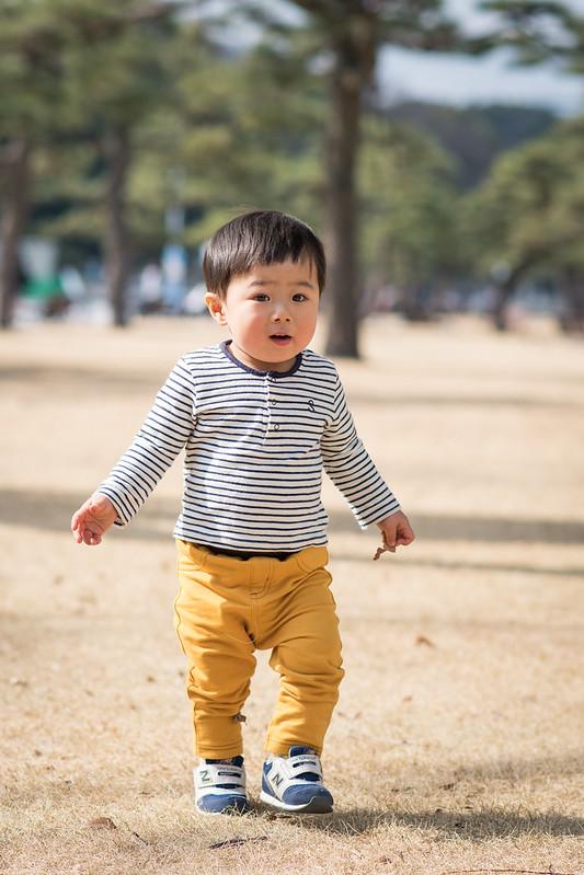 冬の皇居外苑の芝生を歩く子ども2枚め