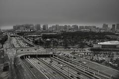 when fog decapitates a city #DailyDallasPic 022318 1:03p 46° f22 1/160 18mm ISO 100 #Dallas #bnwphotography #bnw_just #bnw_city #bw #bnw_society #bnw_captures #bnw #skyline #lpcityskyline #blackandwhite #monochrome #DFW #DallasTX #everything_bnw #bnw_hunt