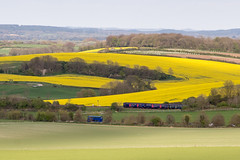 Bus and train in Dorset landscape