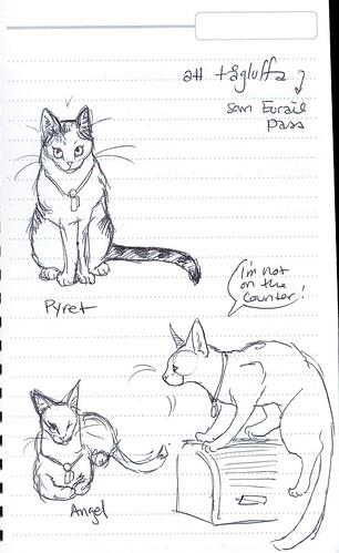 oldercats-sketch