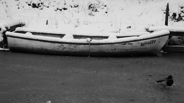 Snowy Edinburgh 021
