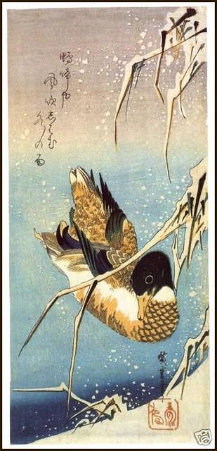 Wild Duck Swimming © Andō Hiroshige, 19th c.