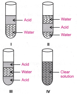 cbse-class-10-science-practical-skills-properties-of-acetic-acid-17
