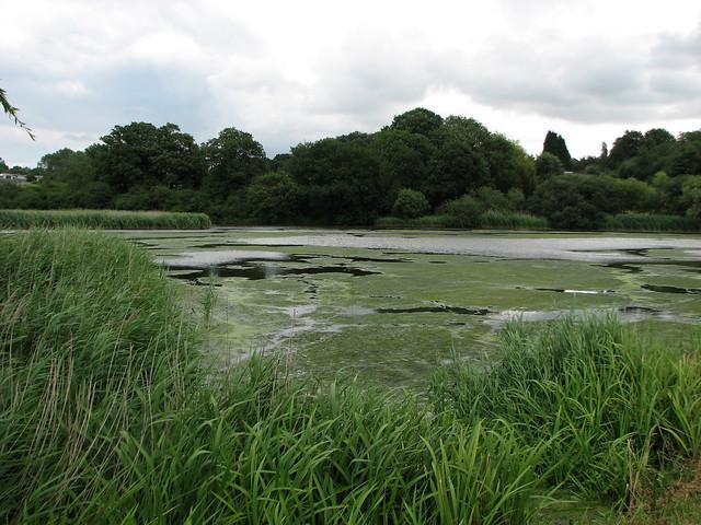 Thorrington Tide Mill