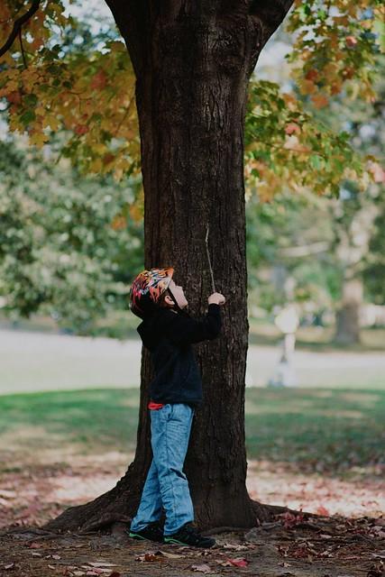 paličkou o strom