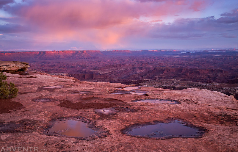 Canyonlands In Pink