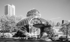 Palm House Brooklyn Botanical Garden_Leica_M2_Ilford SFX Infrared 200