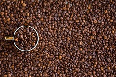 cafe-coffee-morning-seed-roast-aroma - Must Link to https://coffee-channel.com