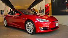 Tesla in the Showroom