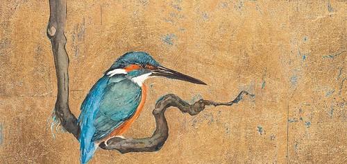 Kingfisher-©-Jackie-Morris-848x400