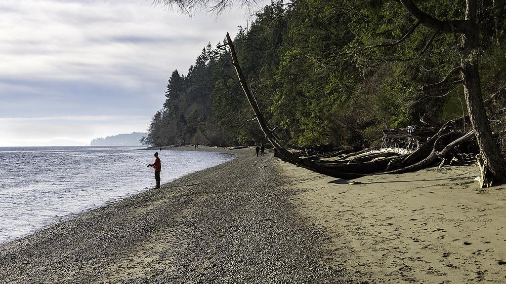 Wollochet Bay Washington Tripcarta