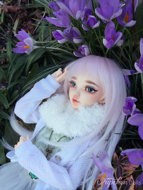 [Fairyland, Minifee Chloe] Le retour de Naelle (p8) - Page 8 39425028605_c2ea6dfeb9_z