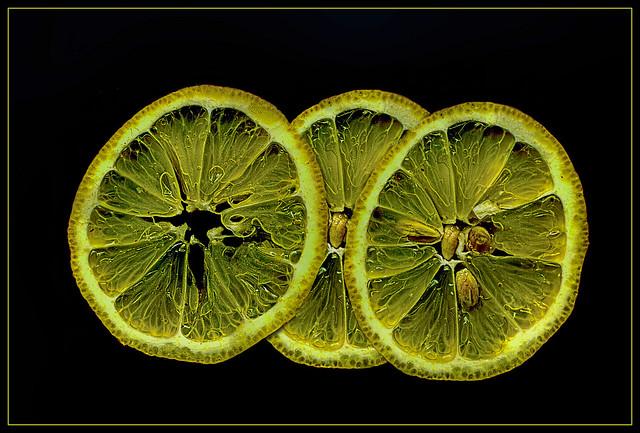 Citrus slices scanned .....