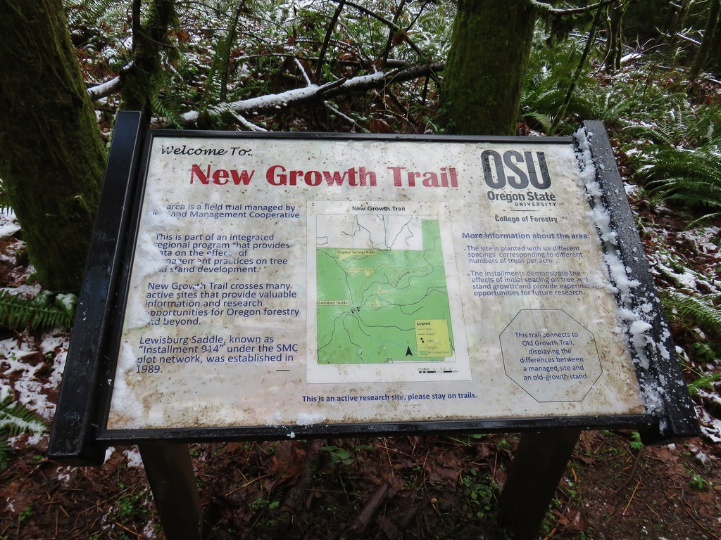 New Growth Trail Sign