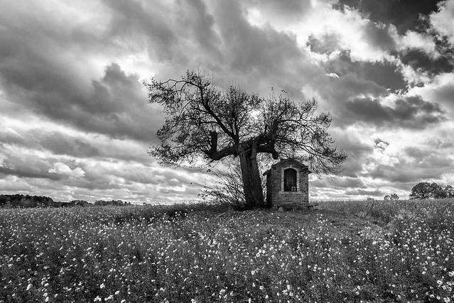 Chapel Sint Pieters Rode, Nikon D610, AF-S Nikkor 18-35mm f/3.5-4.5G ED