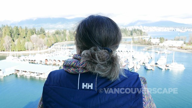 Helly Hansen Crew Insulator Vest-2