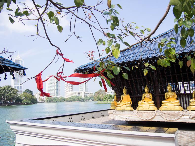 buddha-temple-colombo-sri-lanka