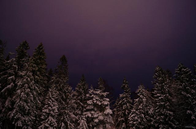 Winter Night, Sony SLT-A57, DT 18-55mm F3.5-5.6 SAM