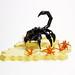 Cyber Scorpio by Devid VII
